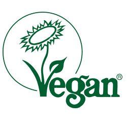 gezondste-restaurant-van-Antwerpen-vegan